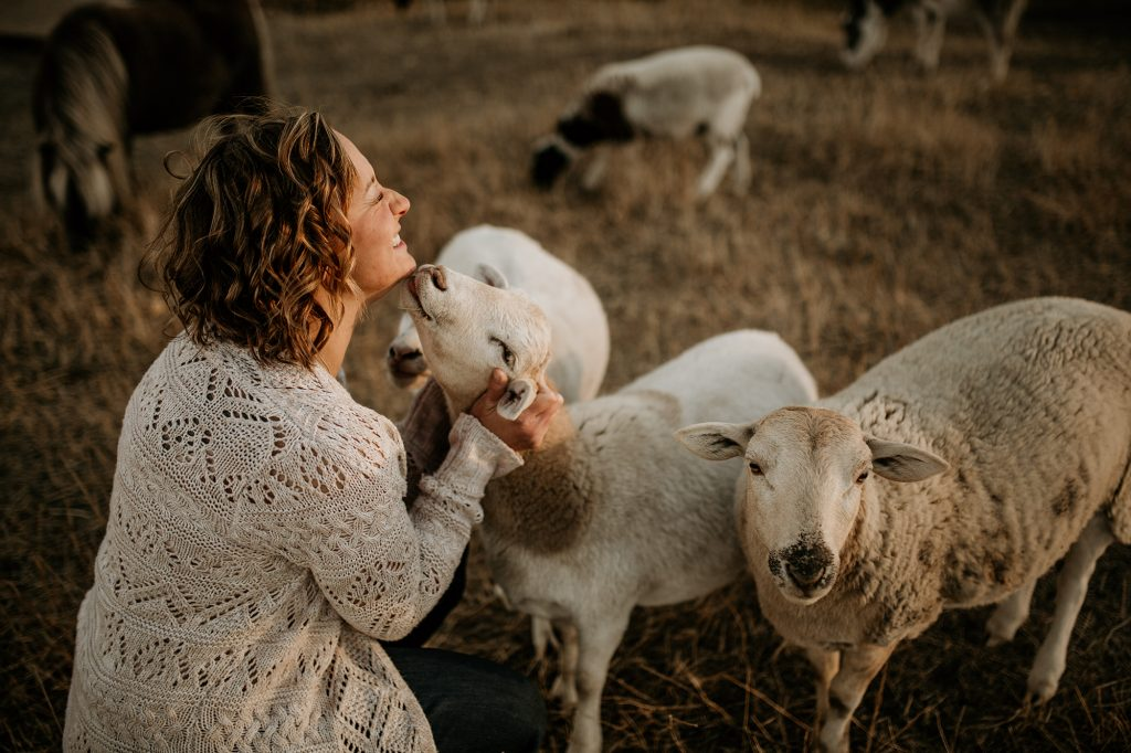 Cassandra from Jungle Out There getting sheep kisses